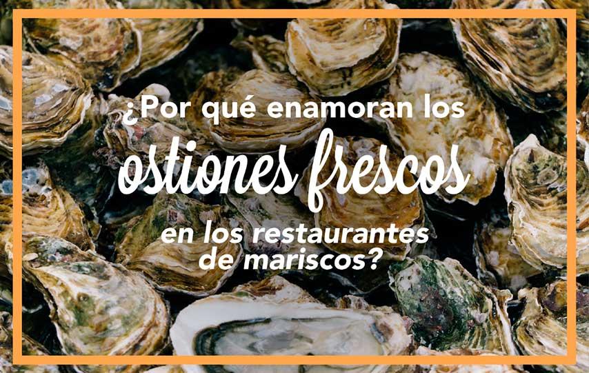 ¿Por qué enamoran los ostiones frescos en los restaurantes de mariscos?