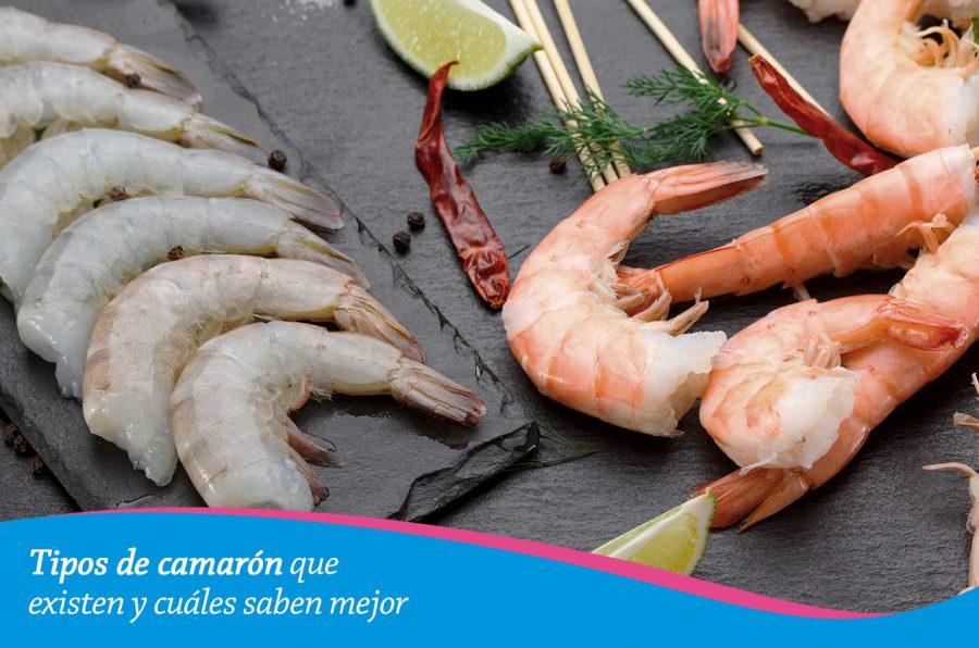 Tipos de camarón que existen y cuáles saben mejor