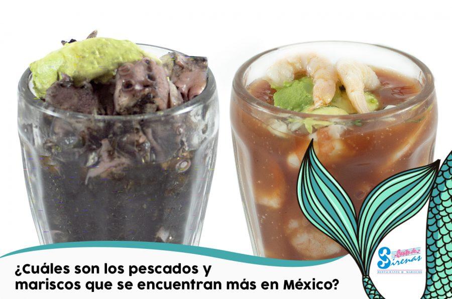 ¿Cuáles son los pescados y mariscos que se encuentran más en México?