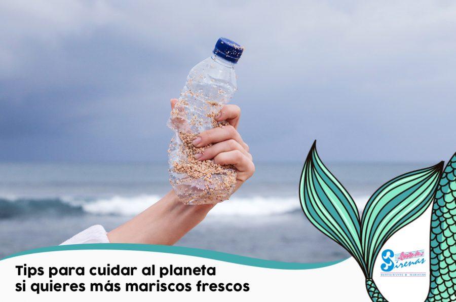 Tips para cuidar al planeta si quieres más mariscos frescos