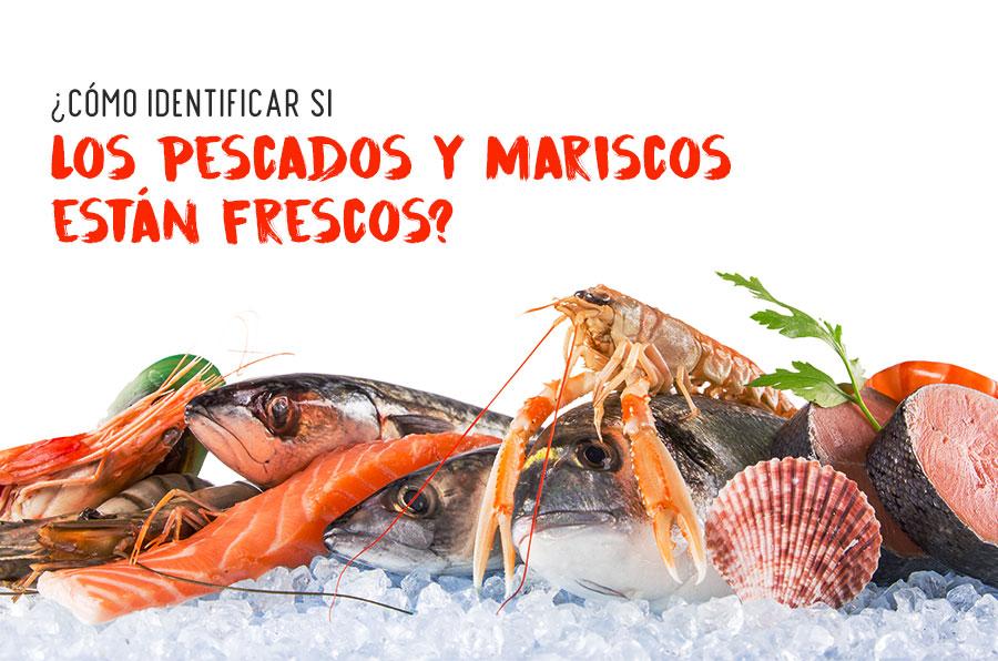 ¿Cómo identificar si los pescados y mariscos están frescos?