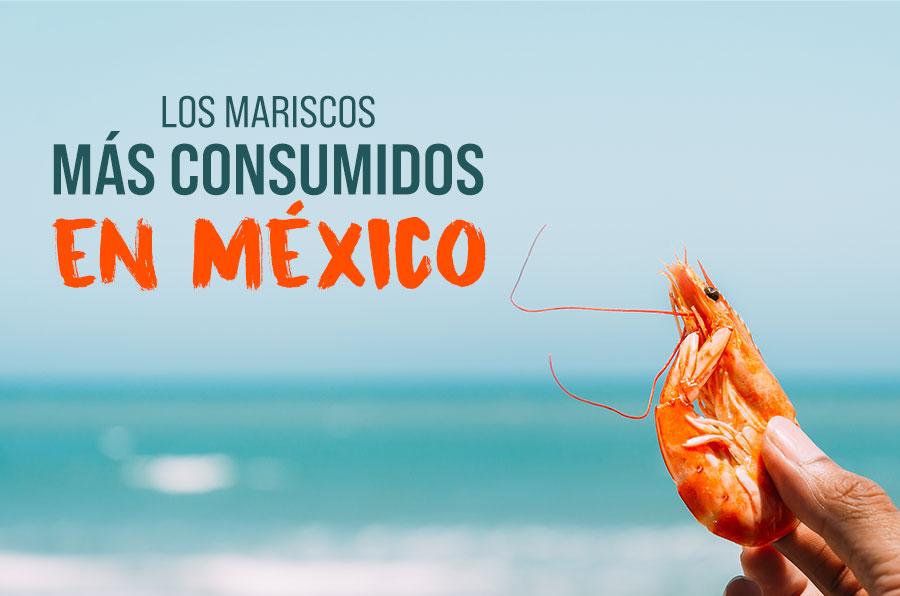 Conoce cuáles son los pescados y mariscos más consumidos en México